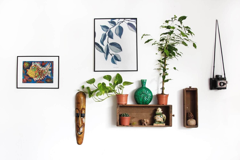 bohemian wall decor, plants, frames