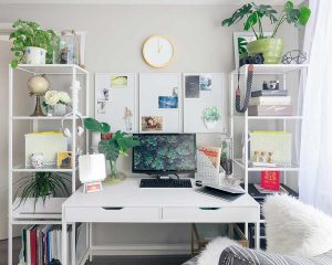 home office layout with white desk and plants