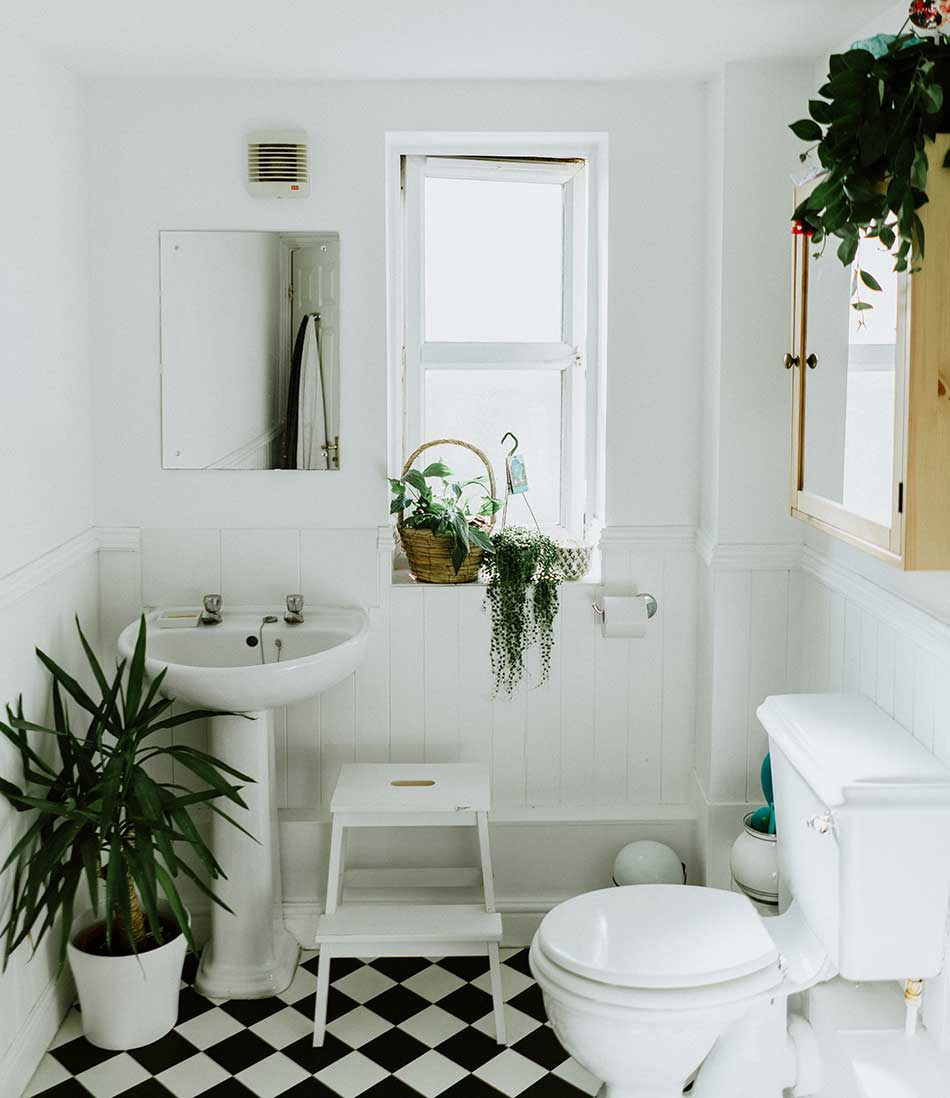 Feng shui rules for bathroom decorating.