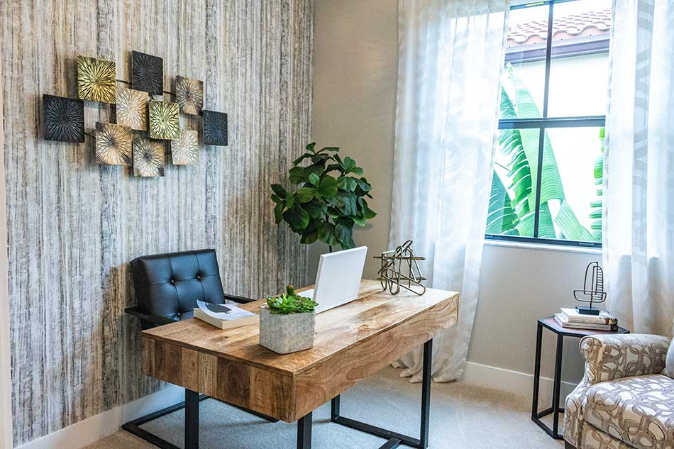 Feng shui desk placement and greenery, home office decorating.
